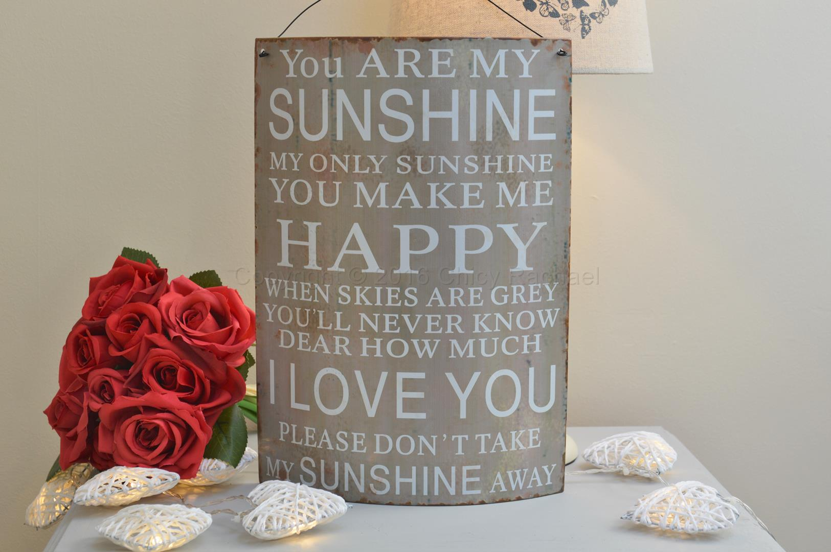 You Are My Sunshine Curved Metal Sign