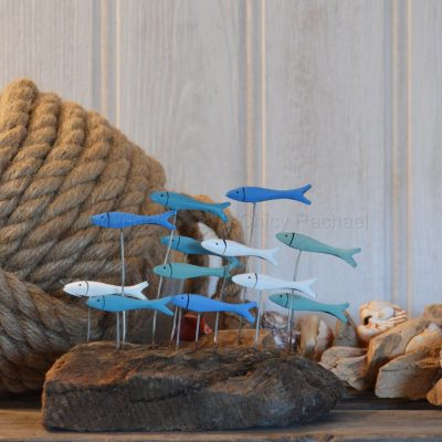 School Of Fish On Driftwood
