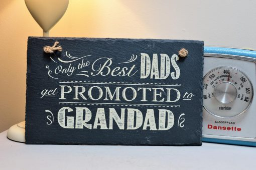 Only The Best Dads Get Promoted To Grandad 2