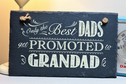 Only The Best Dads Get Promoted To Grandad 4