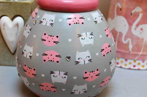Cat Pattern Pot OF Dreams Money 6